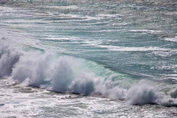 Waves of the Indian Ocean